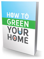 how to green your home boek