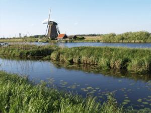 natuur zuid holland