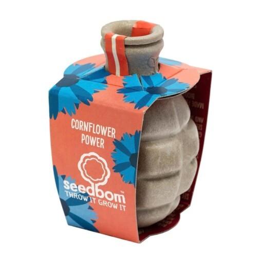 seedbom cornflower - zaadbom korenbloem