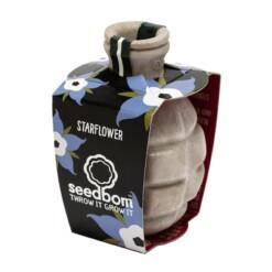 seedbom starflower - zaadbom komkommerkruid
