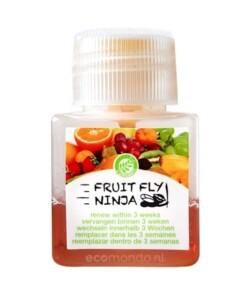 fruit fly ninja