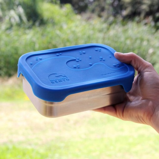 blue water lunchbox