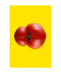 toffe peren extravagant total tomato